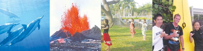 Universal English Academy ハワイ島のアクティビティー