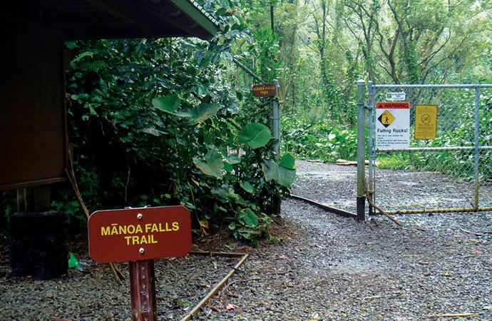 Manoa Fallsの入り口。