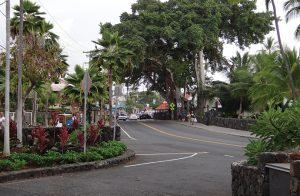 ハワイ島「FAQ」在住9年 Hawaii Community College スタッフ インタビュー