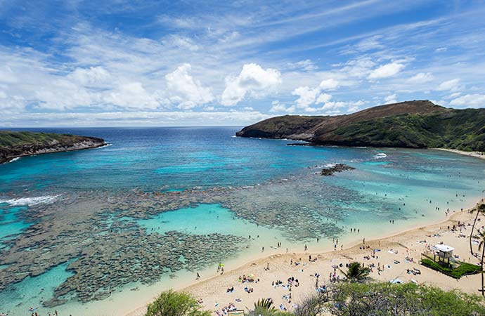 【新型コロナ】ハワイ語学学校 運営状況 一覧
